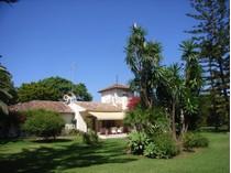 独户住宅 for sales at Charming villa on magnificent plot in Guadalmina    Marbella, Costa Del Sol 29679 西班牙