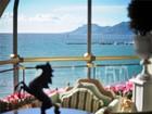 Condominio for  sales at Cannes Croisette, unique Penthouse for sale  Cannes, Provenza-Alpi-Costa Azzurra 06400 Francia