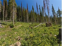 Terreno for sales at Desirable Southern Exposure Residential Building L 5461 Lookout Ridge Place   Sun Peaks, British Columbia V0E 5N0 Canadá