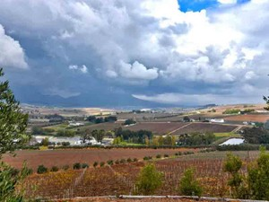 Additional photo for property listing at Modern Winery located in the most scenic valley  Stellenbosch, Western Cape 7600 South Africa