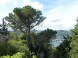 Property Of Prestigious period villa overlooking Lake Como