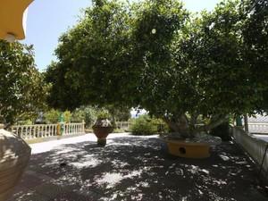 Additional photo for property listing at Art Nouveau Elegance Lindos Rhodes, Egeo Meridional 85100 Grecia