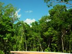 Land for sales at ALDEA ZAMÁ  Tulum, Quintana Roo 77780 Mexiko