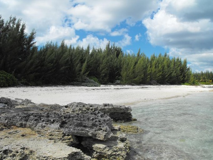 Terreno for sales at Turtle Rocks Beachfront Turtle Rocks, Abaco . Bahamas