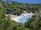 Single Family Home for  sales at Ref. V1730 - Pinarello   Porto Vecchio, Corsica 20137 France