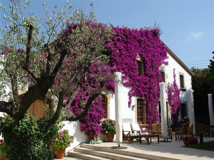 Maison unifamiliale for sales at Unique country house only 400m from the beach  S'Agaro, Costa Brava 17248 Espagne