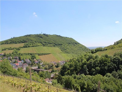 Land for sales at Magnificent Piece of Land with a Spectacular View to Ni    Bingen, Rheinland Pfalz 55411 Germany
