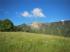 Terrain for  sales at Exceptional plot of 13,758 m2 with 360° views  Montreux, Vaud 1824 Suisse