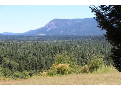 Đất đai for sales at Sun Country 21 Hermitage Drive Cle Elum, Washington 98922 Hoa Kỳ