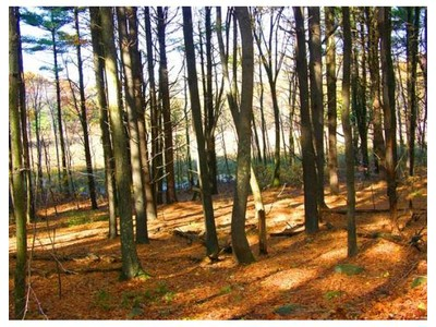 Land for sales at 0 Under Pin Hill Road  Harvard, Massachusetts 01451 United States