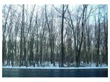 Land / Lots for sales at 0 Middle Road  Enfield, Connecticut 06082 United States