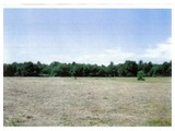 Land for sales at 110 East Hodges Street  Norton, Massachusetts 02766 United States