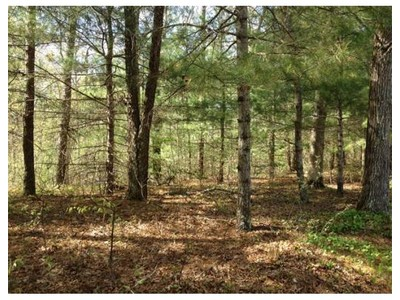 Land for sales at 755 Route 149  Barnstable, Massachusetts 02648 United States