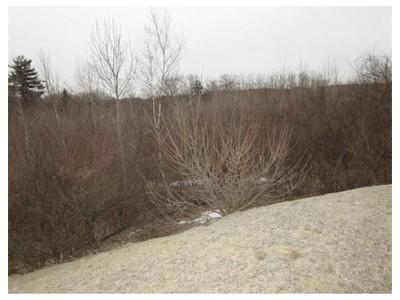 Land for sales at 10  Lot5 Mcgrath Road  Methuen, Massachusetts 01844 United States