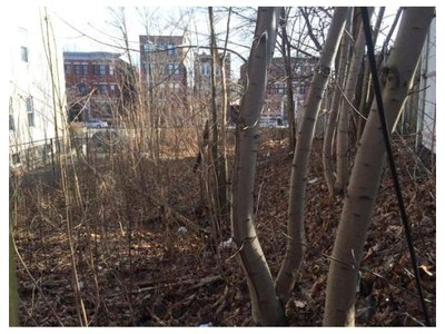 Land for sales at 458 Columbia Rd  Boston, Massachusetts 02125 United States