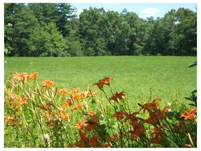 Land for sales at 59 Pleasant St.  Grafton, Massachusetts 01519 United States