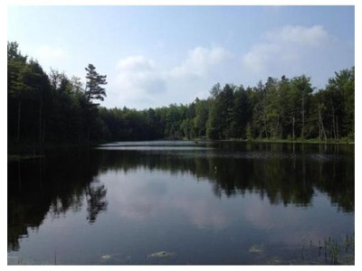 Land for sales at 0 Trail Cir  Becket, Massachusetts 01223 United States