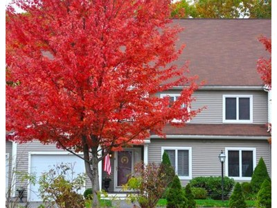 Co-op / Condo for sales at 6 Vine Brook Way  Woburn, Massachusetts 01801 United States