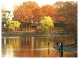 Multi Family for sales at 46 Haverford St  Boston, Massachusetts 02130 United States
