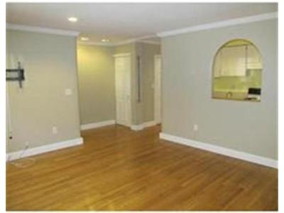 Rentals for rentals at 18-20 E. Springfield St.  Boston, Massachusetts 02118 United States