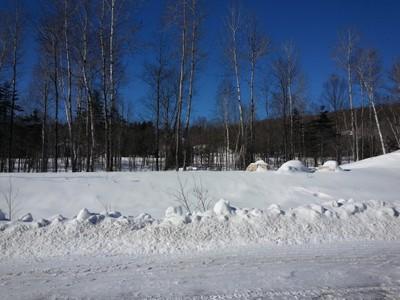 Terrain for a-vendre at Rue Des Amanites  Mont-Laurier, Quebec J9L 3G4 Canada