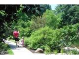 Single Family for sales-communities at Central Living  Atlanta Medlin Park  Smyrna, Georgia 30080 United States