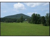 Land for sales at 7948 Cedar  Townsend,  37882 United States