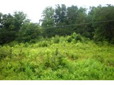 Land for sales at Wears Valley Road  Townsend,  37882 United States