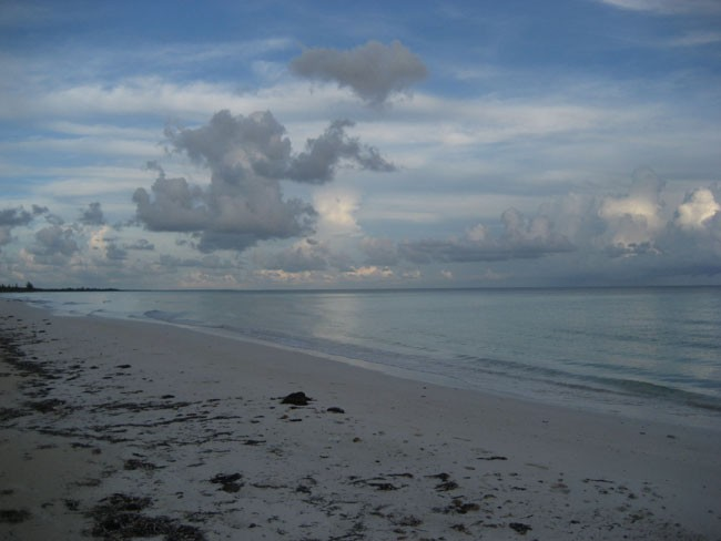 Land / Lots for sales at 32 acres of beautiful beachfront just west of Pelican Point Grand Bahama, Bahamas