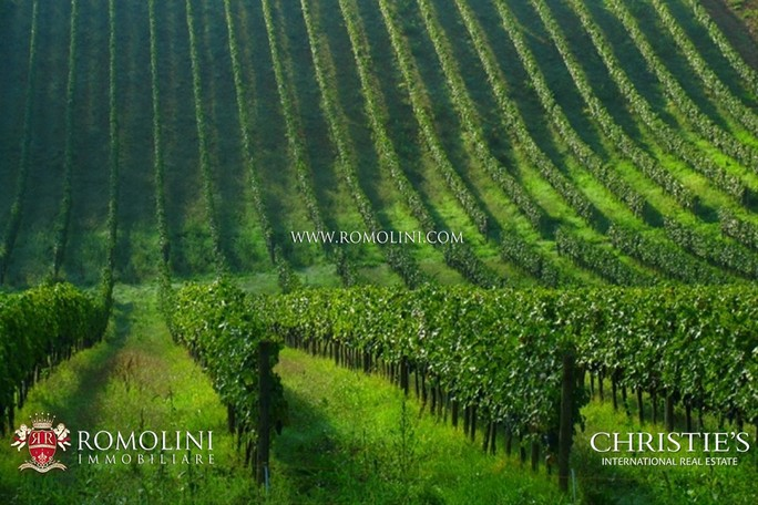 Vineyard for sales at Tuscany - ESTATE WITH VINEYARD FOR SALE FLORENCE Firenze, Italy