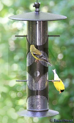 Colibri Upside-Down Goldfinch Feeder