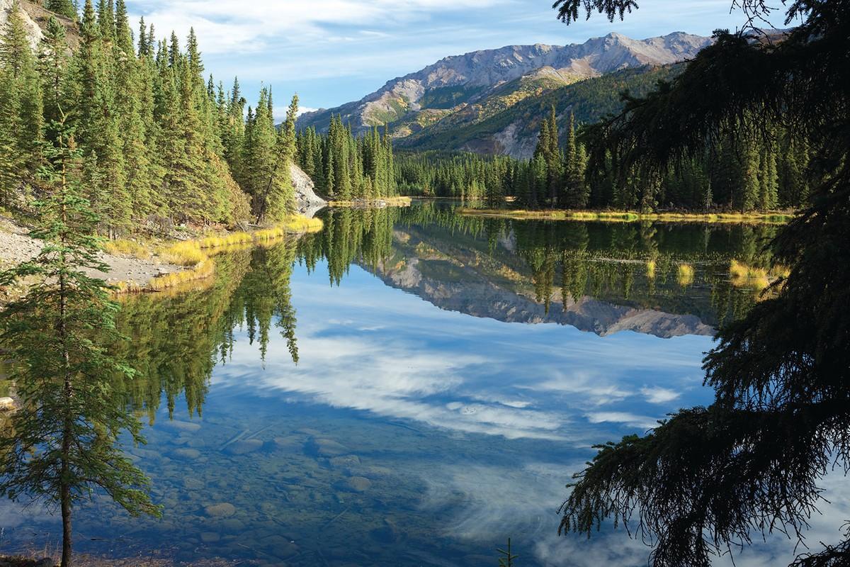 Reflections in the beautiful blue waters of Horseshoe Lake at Denali National Park in Alaska