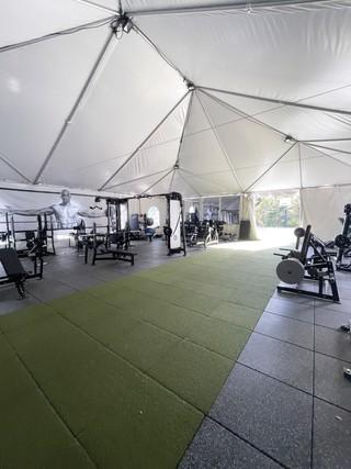 Professional-Level Home Gym
