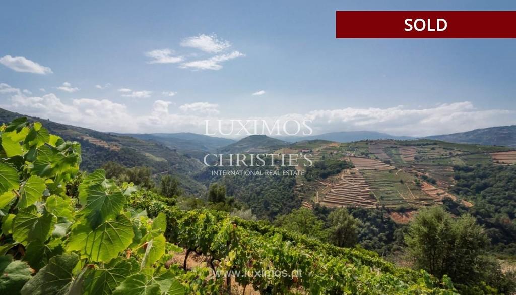 Sale of Vineyard in Douro region, Santa Marta de Penaguião, Portugal: a  luxury home for sale in , , Vila Real - Property ID:CS03023 | Christie's